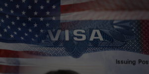 Immigration Visa Application & Renewal Services